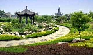 世纪公园绿化