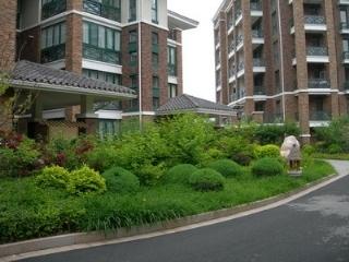 富丽家园绿化